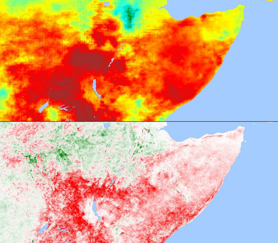 Interrelationship between rainfall anomalies (top) and the state of vegetation in Eastern Africa for the reference period June 2010-June 2016 and the comparison period June 2016-June 2017.